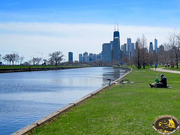 Rowing Lagoon - Lincoln Park - Chicago, IL - Dr. Frank Rink