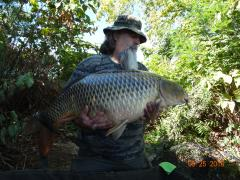 image.jpeg Common Carp Delaware River 43 Lbs.