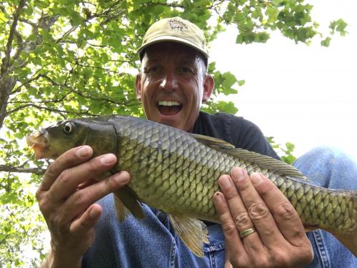 Common carp 2lb 3 oz Aug 20 2017.JPG