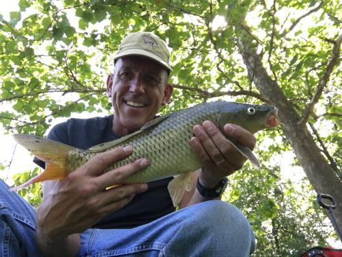 Common carp 4lb 8oz Aug 20 2017.JPG