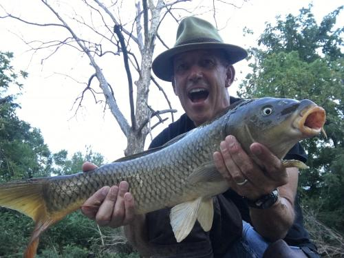 Creek carp 6lb 7 oz Aug 6 2018.JPG