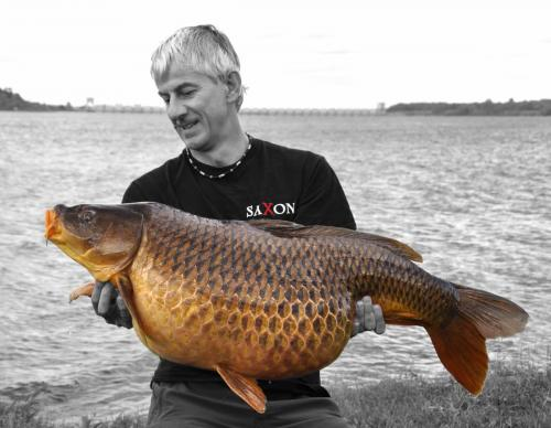 iain_carp_sample.jpg