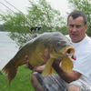 South New Jersey Carp? - last post by ErJot