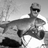 Colorado - The Search For Carp - last post by JohnFinney