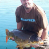 Targeting Goldfish - last post by Carpskunker