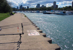 Diversey Harbor  Chicago, IL - Dr. Frank Rink