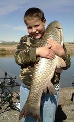 Hunters Big Grass Carp