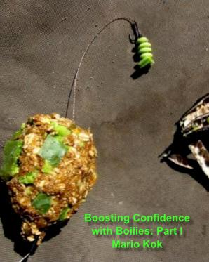 Boosting Confidence with Boilies - Part I