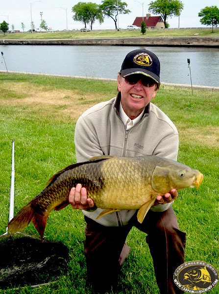 """17-0 """"three-tone"""" common - May 2012 CAG Fish-in, Lagoon - Chicago, IL - Dr. Frank Rink"""