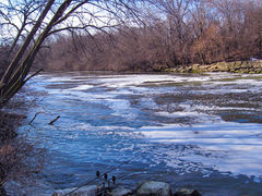 Chicago River - Discharge (no longer available to anglers) -  Skokie, IL - Dr. Frank Rink