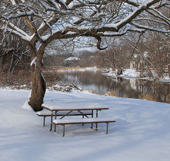 DuPage River - Picnic anyone? - Naperville, IL - Dr. Frank Rink